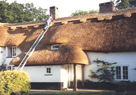 master thatcher armstrong wilts dorset hants hampshire thatching services process